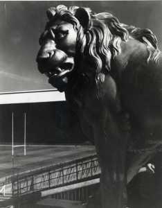 28. The Lion 1971